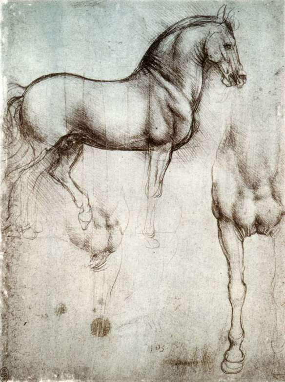 Study of horses c. 1490 Silverpoint on prepared paper, 250 x 187 mm Royal Library, Windsor Leonardo displays considerable delicacy in the modelling of the outer surface of the horse, and this combines with a confidence in its figural design. Since the Adoration of the Magi Leonardo had become particularly interested in horses, and this is documented by a large number of studies of their proportions and movements.
